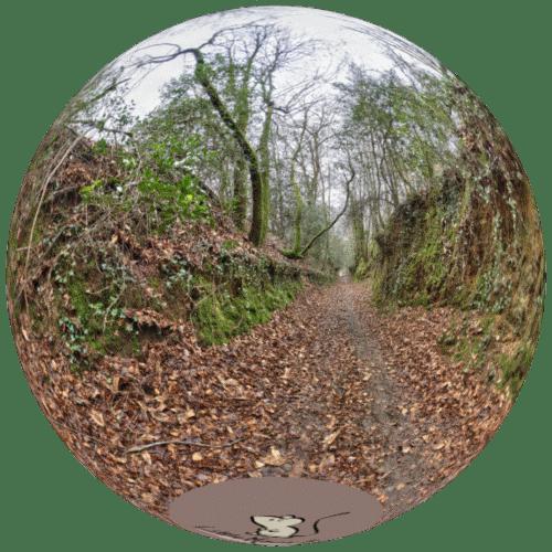 Visite virtuelle Balade Folleux
